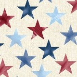 Large Stars Whitewash Multi