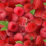Berry Good Raspberries Raspberry