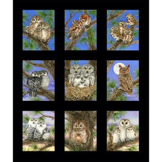 Owl Families Panel Black