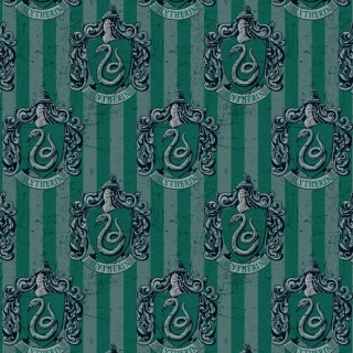 Harry Potter Hogwarts Houses Slytherin